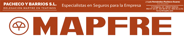 MAPFRE WEB