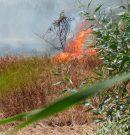 Incendio en la ampliación de Teatinos
